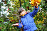 Little girl in blue coat happy with maple leaves