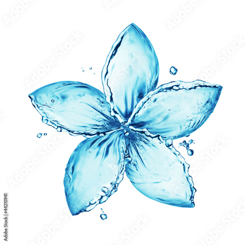 flower made of water splash