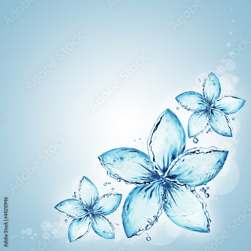 flowers made of water splash