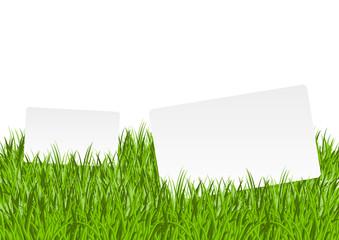 Banner in grass