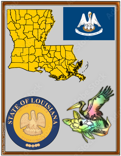 USA state Louisiana flag map coat bird