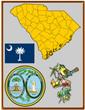 USA state South Carolina flag map coat bird