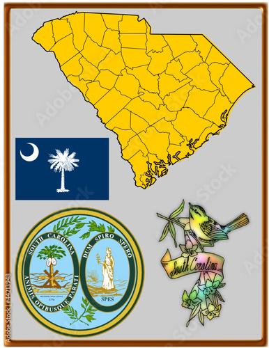 USA state South Carolina flag map coat bird