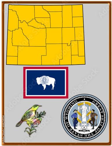 USA state Wyoming flag map coat bird