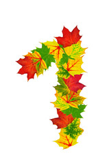 Autumn maple Leaves in the shape of number 1