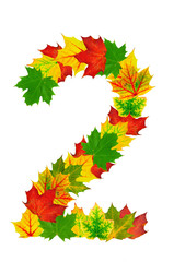 Autumn maple Leaves in the shape of number 2