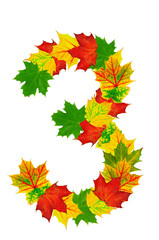 Autumn maple Leaves in the shape of number 3