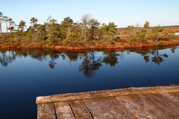 Marsh landscape in Estonia with lake and swimming platform