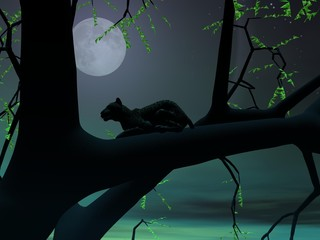 Panther by green night