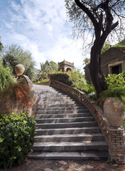 Stairs in the garden