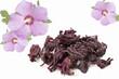 Hibiskusblüten- Hibisci flos