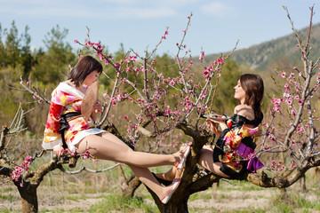 looks like geisha sit on the tree