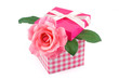 Pink rose in a gift box
