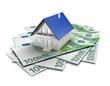 Haus mit 100 Euro Scheinen 2
