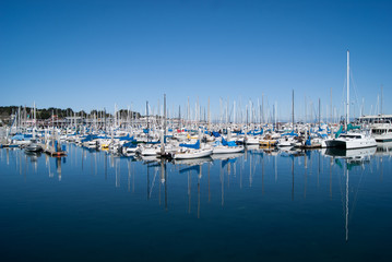 Yachts on still water in Monterey harbour