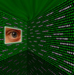 Spyware eye scanning binary code