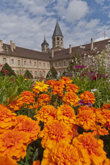 tower of cluny abbey behind flowers