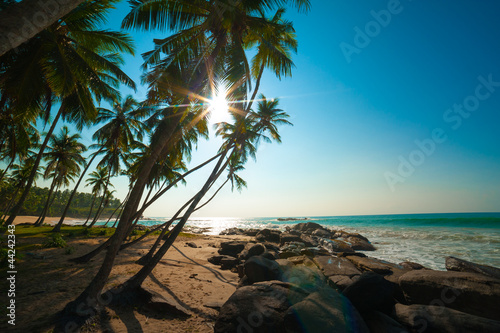 Tropical beach