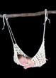 adorable newborn suspended in hammock