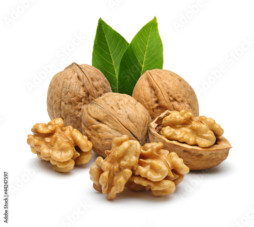walnut and leaves