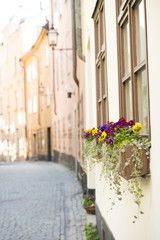 Street in old town Stockholm