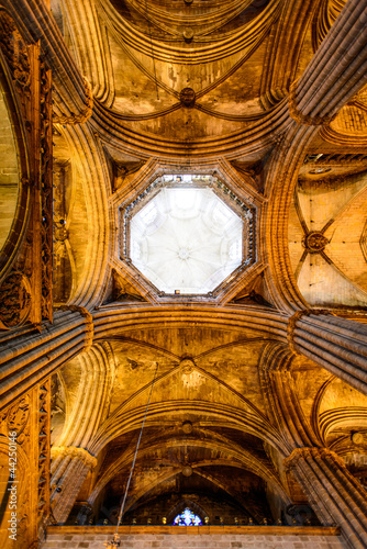 ceiling of gothic cathedral