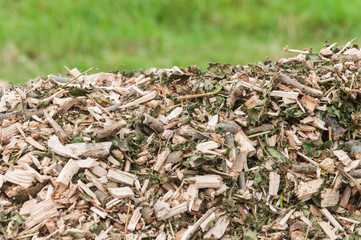 Top of a pile with woodchips
