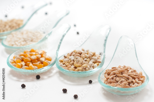 Cereals - grains on a white background_ Cereali su sfondo bianco