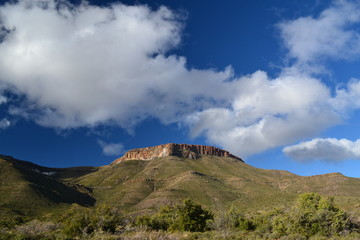 Karoo National Park in sud africa