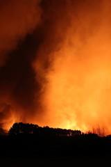 Fuego y humareda, incendio forestal en Torneros de Jamuz, León