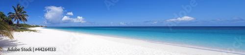 Caribbean beach. - 44264133