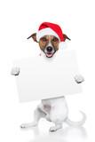 christmas dog placeholder poster