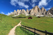 Dolomiti - Cir group from Gardena pass