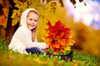 preschool little girl with autumn leaves in the beauty park