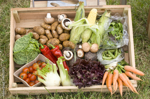 Box of healthy vegetables