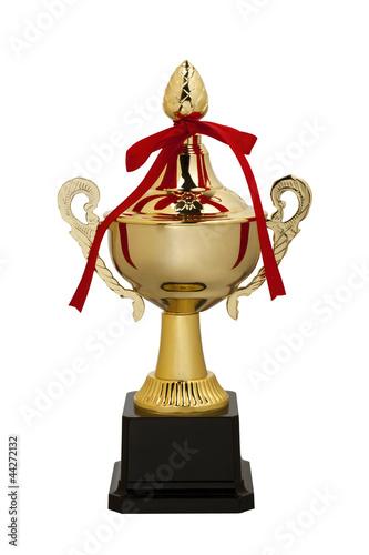 Trophy cup