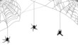 three spiders in black web on white - 44278706