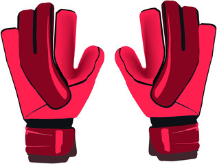 sports gloves goalkeeper