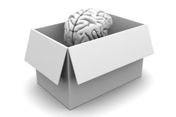 Intelligenz aus der Schachtel