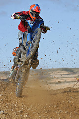 motocross wheelie