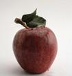 Apfel frisch
