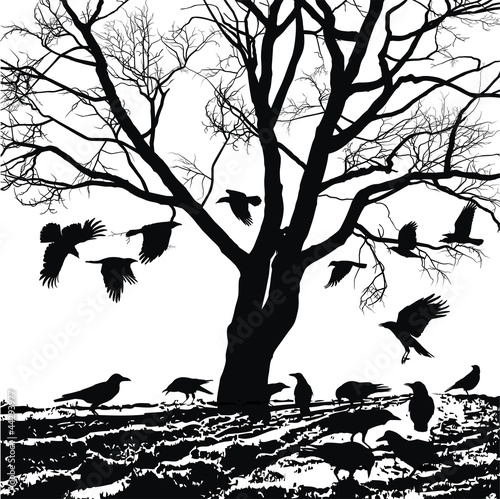 Crows under the tree - 44293977