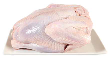 Raw turkey. Isolated