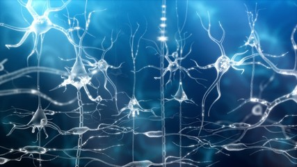 Neuronal Activity Female Blue