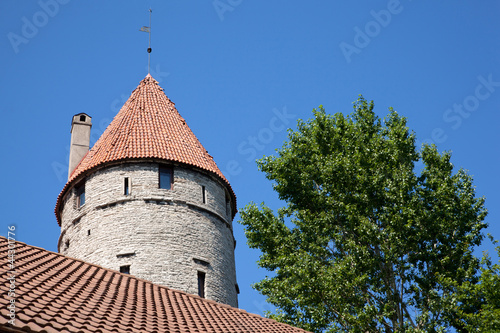 fort near green tree in Tallinn, Estonia, from below