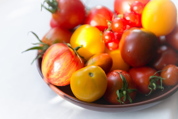 Colorful different varieties of tomatoes