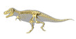 T-Rex dinosaur photo-realistic full skeleton, side view with bod