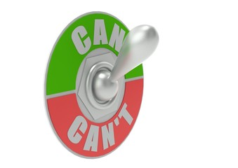 Can or Can t Toggle Switch