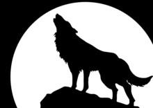 Heulender Loup vor Mond