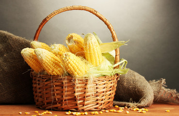 fresh corn in basket, on wooden table, on grey background